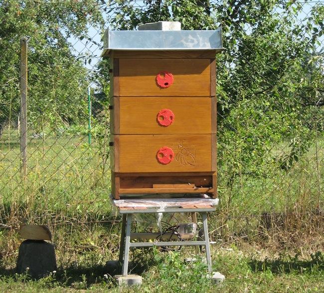 Pohled na přední stranu včelího úlu. Vpravo dole je vidět plastová krabička s elektronikou.